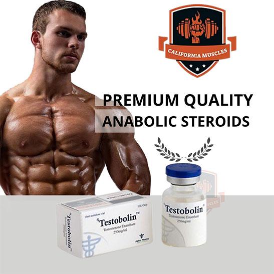testobolin on californiamuscles.net