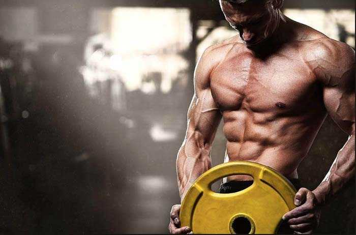 Steroids for Sale in USA from Domestic Shop