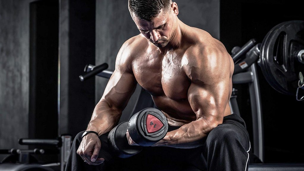 testosterone cypionate cycle results